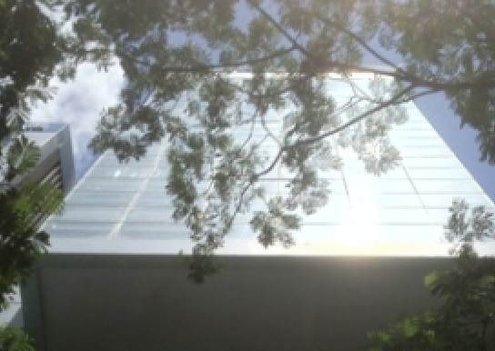 ben-thanh-1-building-XOh