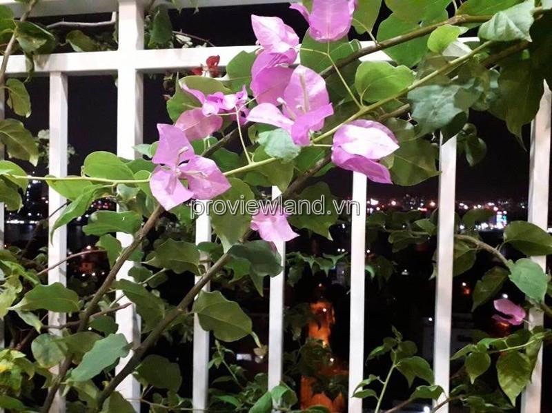 cho-thue-can-ho-ghep-tropic-garden-5249