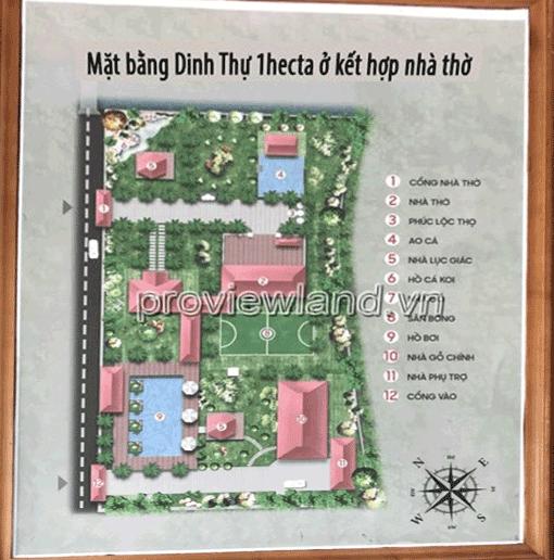 ban-dinh-thu-quan-9-rong-1-hecta-5522