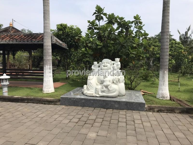 ban-dinh-thu-quan-9-rong-1-hecta-5538