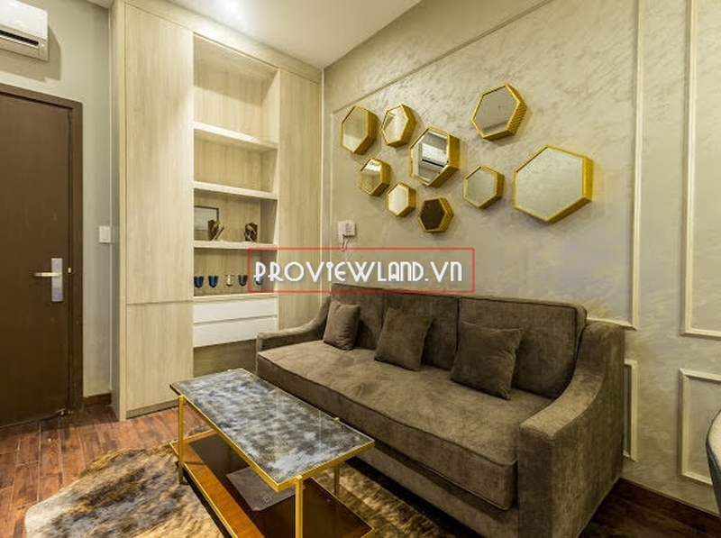 wilton-binh-thanh-apartment-for-rent-1bed-proview2012-10