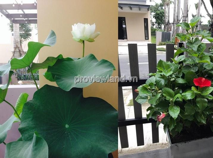 cho-thue-nha-pho-palm-residence-3146